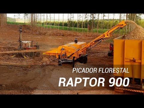 Picador Florestal Raptor 900 picando árvores inteiras