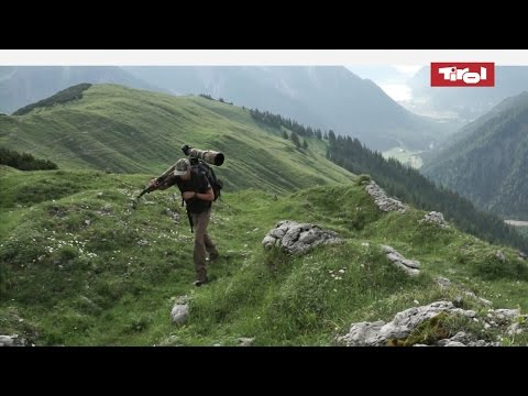 Wildlife Photography in the Alps (Tyrol, Austria)