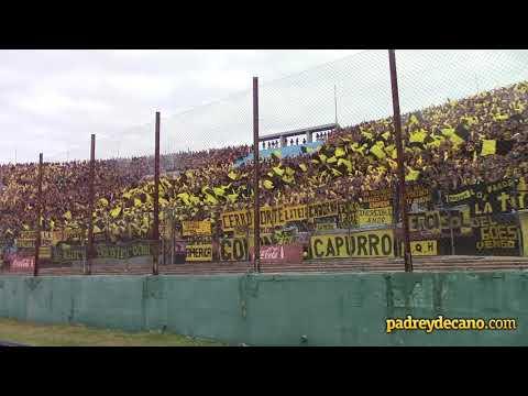 Recibimiento Hinchada Peñarol - (Peñarol 2 Nacional 0) - Barra Amsterdam - Peñarol