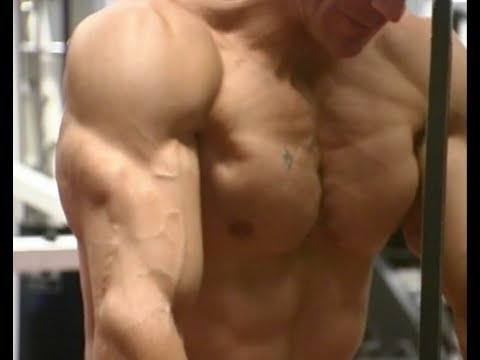Best Chest Workout Bodybuilding Dumbbells and Bench Press with Victor Costa
