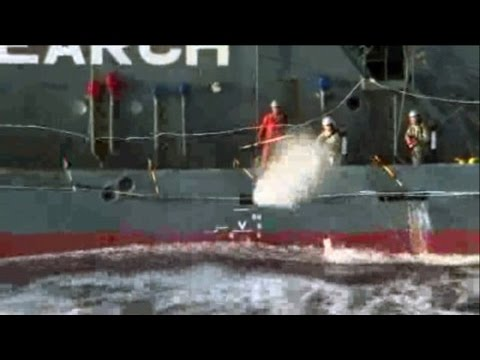 Japanese Whalers Shoot Themselves in the Face with Pepper Spray