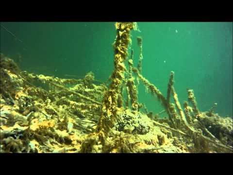 Balaton búvárkodás - víz alatti felvételek