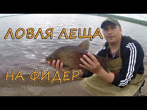 видео ловим на фидер на реке