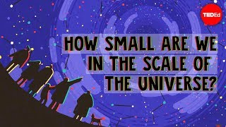 How small are we in the scale of the universe? - Alex Hofeldt