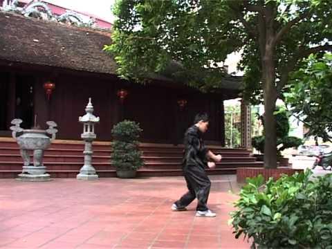Ngôi sao võ thuật Việt Nam toàn cầu - Hồ quyền