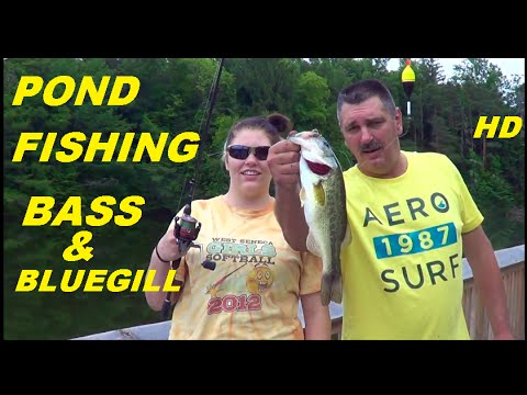 Bluegills & Bass Pond Fish'n