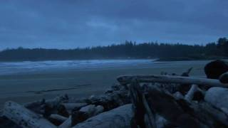 Tofino (BC) Canada  City new picture : The Cutting Edge of Nature, Tofino - British Columbia, Canada