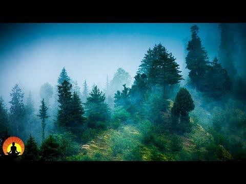 Video 3 Hour Zen Meditation Music: Nature Sounds, Relaxing Music, Calming Music, Healing Music, ✿071C download in MP3, 3GP, MP4, WEBM, AVI, FLV January 2017