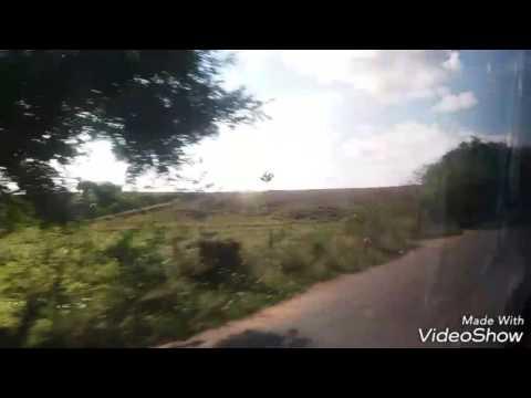 Passando por Porto calvo primeira parte no Neobus New Road 360 N10 da Real Alagoas