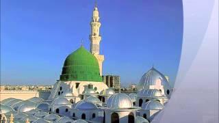 Taajdaar-e-Haram by Muhammad Hammad Hassan.