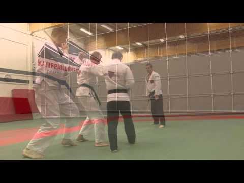 Hokutoryu jujutsu training clips – joint techniques