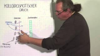 Wasser Und Elektrolyte - Teil 3 (Kolloidosmotischer Druck)