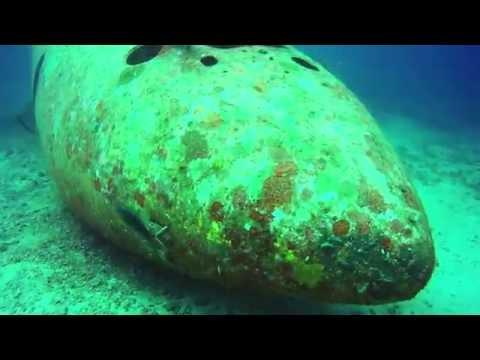 Wreck Diving Tribird Boracay Island. Philippines. 2016