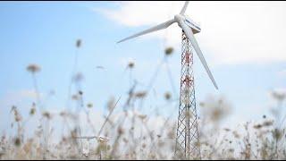 giornata-mondiale-del-vento-gli-impianti-eolici-ivpc