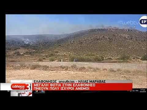 Μεγάλη πυρκαγιά στην Ελαφόνησο – Εκκενώθηκε κάμπινγκ και ξενοδοχεία   10/08/2019   ΕΡΤ