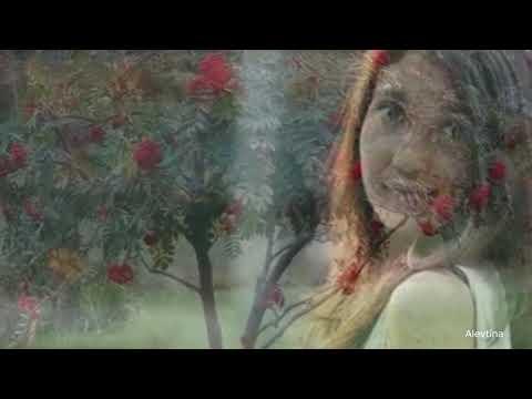 В рябиновом огне музыка, вокал Марат Кадырметов