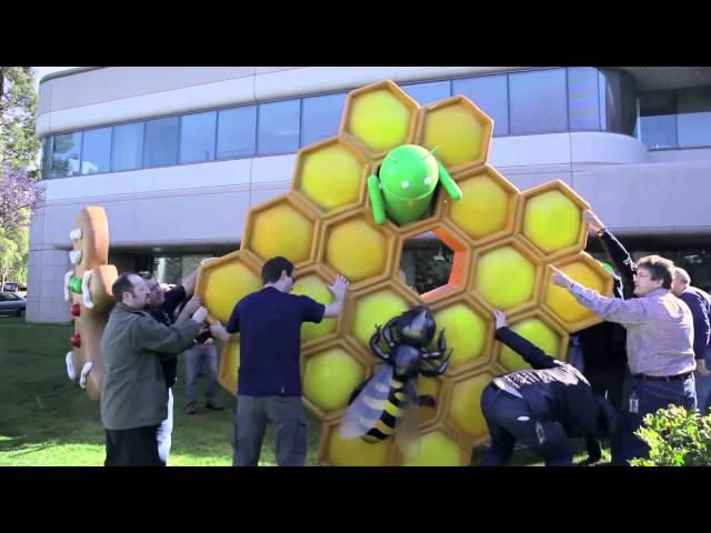 Honeycomb Buzzes on