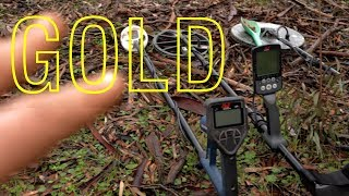 EP19 | FINDING GOLD with all 3 DETECTORS - MINELAB GPX GM1000 EQUINOX 800