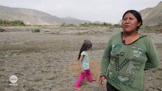 En el sector de Ayhuay, en el corazón del valle de Huarmey, Noemí Quispe arranca las malas hierbas de sus cultivos nacientes. El huaico destrozó sus cuatro hectáreas de chacras que producían espárragos. Le dejó una tierra arenosa y llena de piedras.