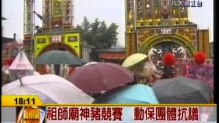 0215--八大--清水祖師廟神豬