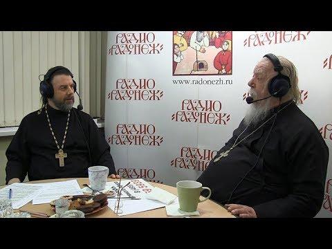 Радио «Радонеж». Протоиерей Димитрий Смирнов. Видеозапись прямого эфира от 2017.11.11