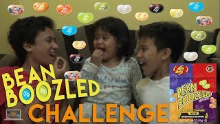 Video Bean Boozled Challenge | Kids Brother MP3, 3GP, MP4, WEBM, AVI, FLV Januari 2019
