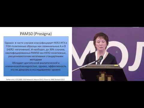 Молекулярная классификация рака молочной железы