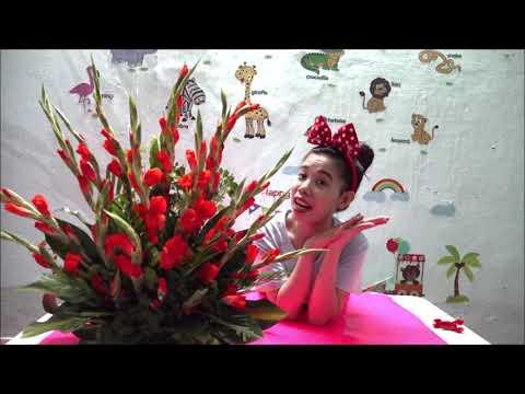 Cách Cắm Hoa Lay Ơn Nở Đẹp