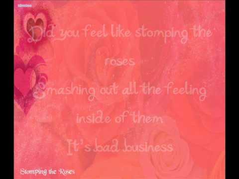 David Archuleta - Stomping the Roses w/ Lyrics on screen