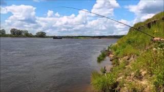 река Ока. Фидер. Июль 2014 г.