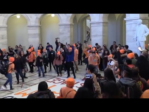 Dreamers Storm Congress During Senate Debate (видео)