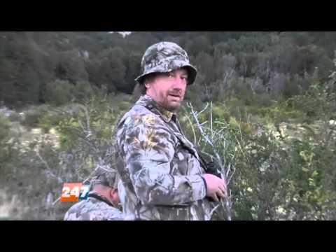 Caza ilegal: un guardafauna guiaba a furtivos para matar ciervos