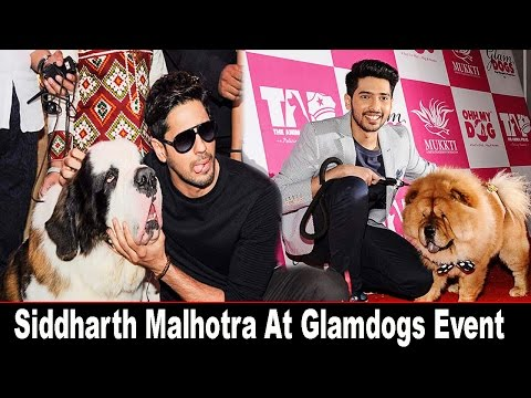 Siddharth Malhotra Spotted At Glam Dogs Event