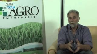 Jorge Romagnoli
