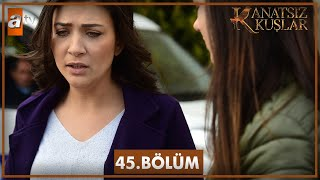 Video Kanatsız Kuşlar 45. Bölüm MP3, 3GP, MP4, WEBM, AVI, FLV Mei 2018
