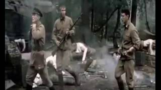 Soldiers killed [545]