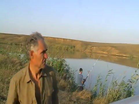 видео рыбалка на большом ставропольском канале