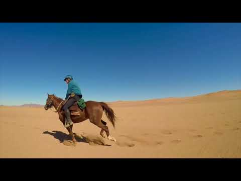 Namib Desert Trail with Christophe Leservoisier