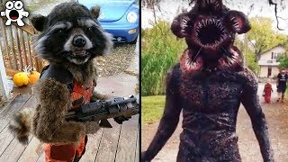 Video Creative Halloween Costumes People Took To The Next Level MP3, 3GP, MP4, WEBM, AVI, FLV Maret 2019