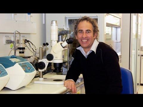 Professor Matthew Cook - Profil