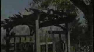 Berkeley Cedar Arbor Video