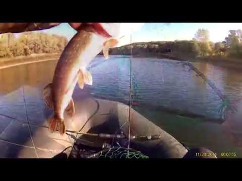 ловля на magsquad видео