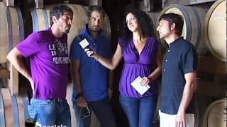 Video TeleRama - 2010
