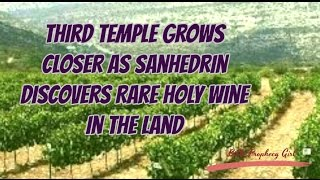 ♡  Prophetic News of the Sanhedrin discovering rare Holy wine in the land.  ♡ http://www.bibleprophecygirl.wordpress.com♡ Music by TITLE: WingsARTIST: NICOLAI HEIDLAS♡ For the full article, please visit…https://www.breakingisraelnews.com/82239/rare-temple-quality-wine-anticipates-messiah-prophecy-paves-way-third-temple/#HMQhq5yzKPw4KvKM.97