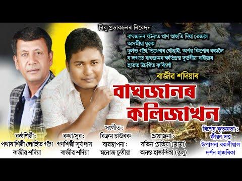 Baghjanor kolija khon || New assamese song || Rajib sadiya