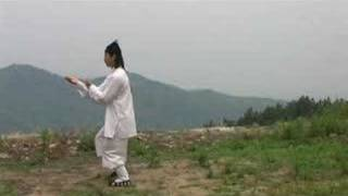Master Chen Shixing performing 13 Postures