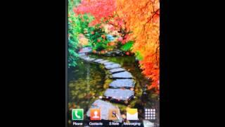 아름다운 가을라이브배경5 YouTube 동영상