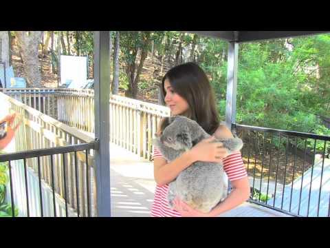 Victoria Justice cuddles the Koala's in Australia
