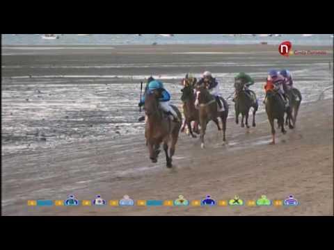 4 Carrera de Caballos, Premio Manzanilla Solear – J. 28 de agosto