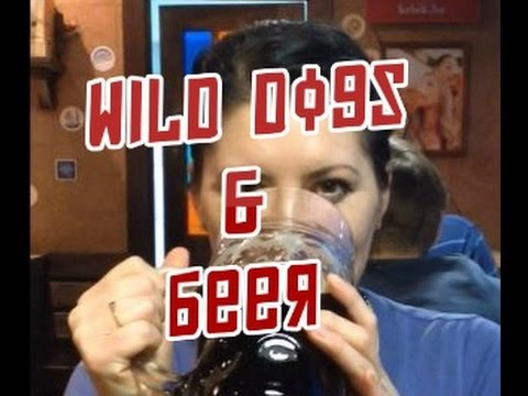 Living In Russia - Wild Dogs & Beer